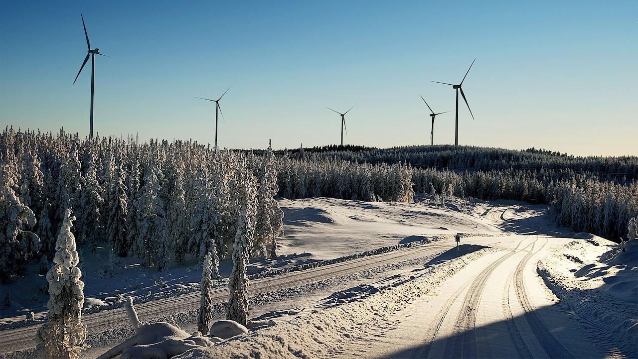 Ленинградская область развивает ветроэнергетику и поддерживает наш проект ветропарка.